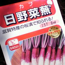 日野菜蕪.jpg