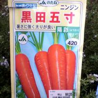 黒田5寸.jpg