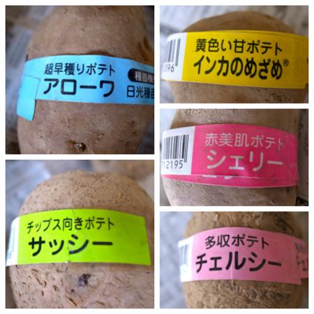 78円イモ10個2.jpg