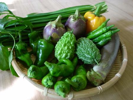 ⑧種の野菜.jpg