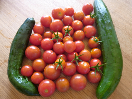 いの中のトマト1.jpg