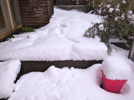 すごい積雪1.jpg