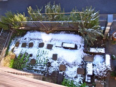 また雪1.jpg