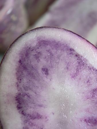 紫あっぷ.jpg