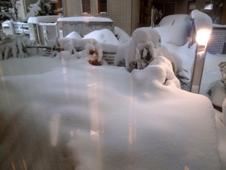 記録的大雪11.jpg