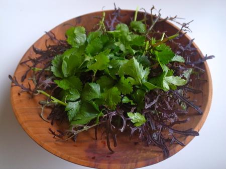 赤水菜サラダ1.jpg