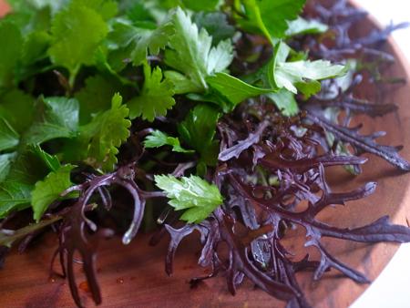 赤水菜サラダ2.jpg